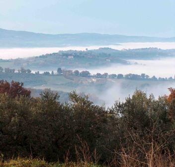 Panorama Valle Umbra